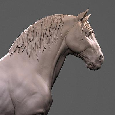 Horse study 2015 HD keyshot renders