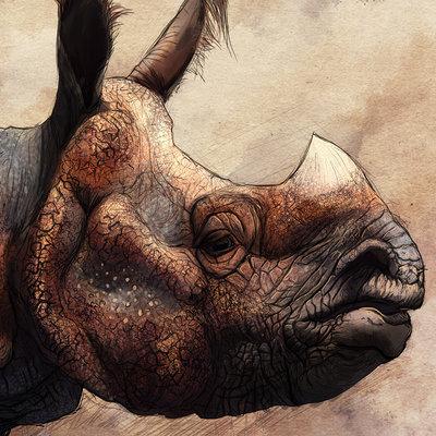 Ruth taylor rhino