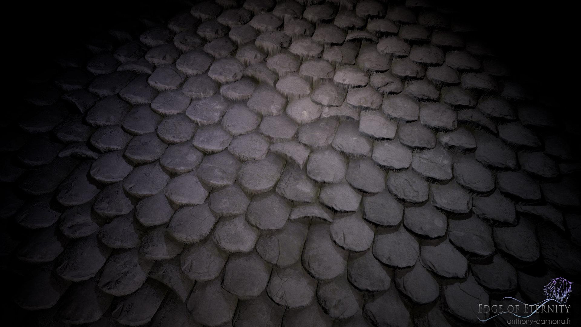 Anthony carmona roof tiles flat