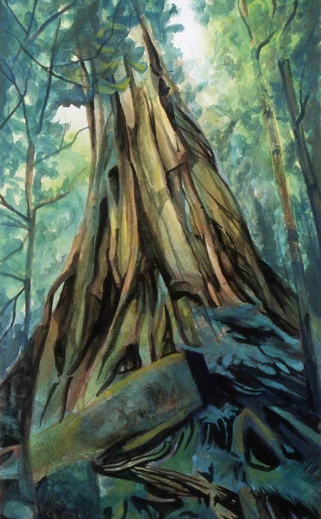 Nick bouldin landscape2