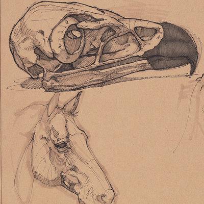 Charles hamel charles hamel dynamic sketching 2 a wk1 573863277