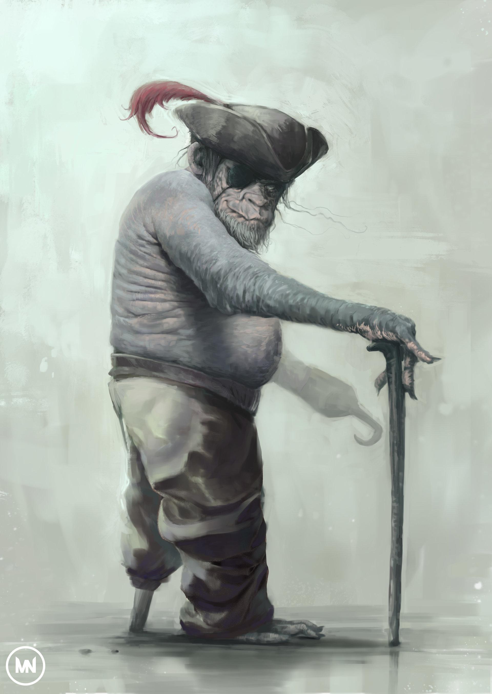 Nandor moldovan monkey pirot