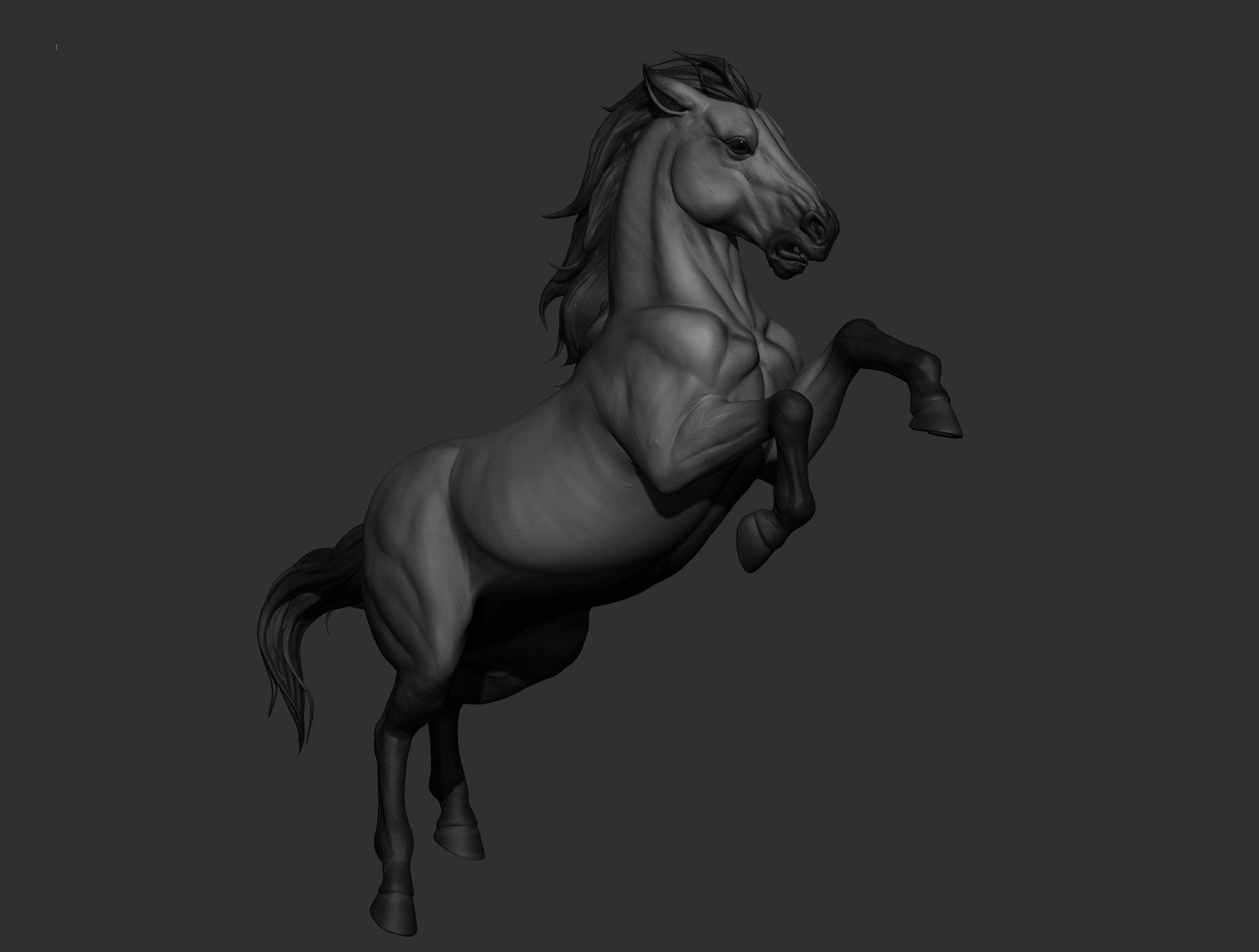 Krystal sae eua horse01
