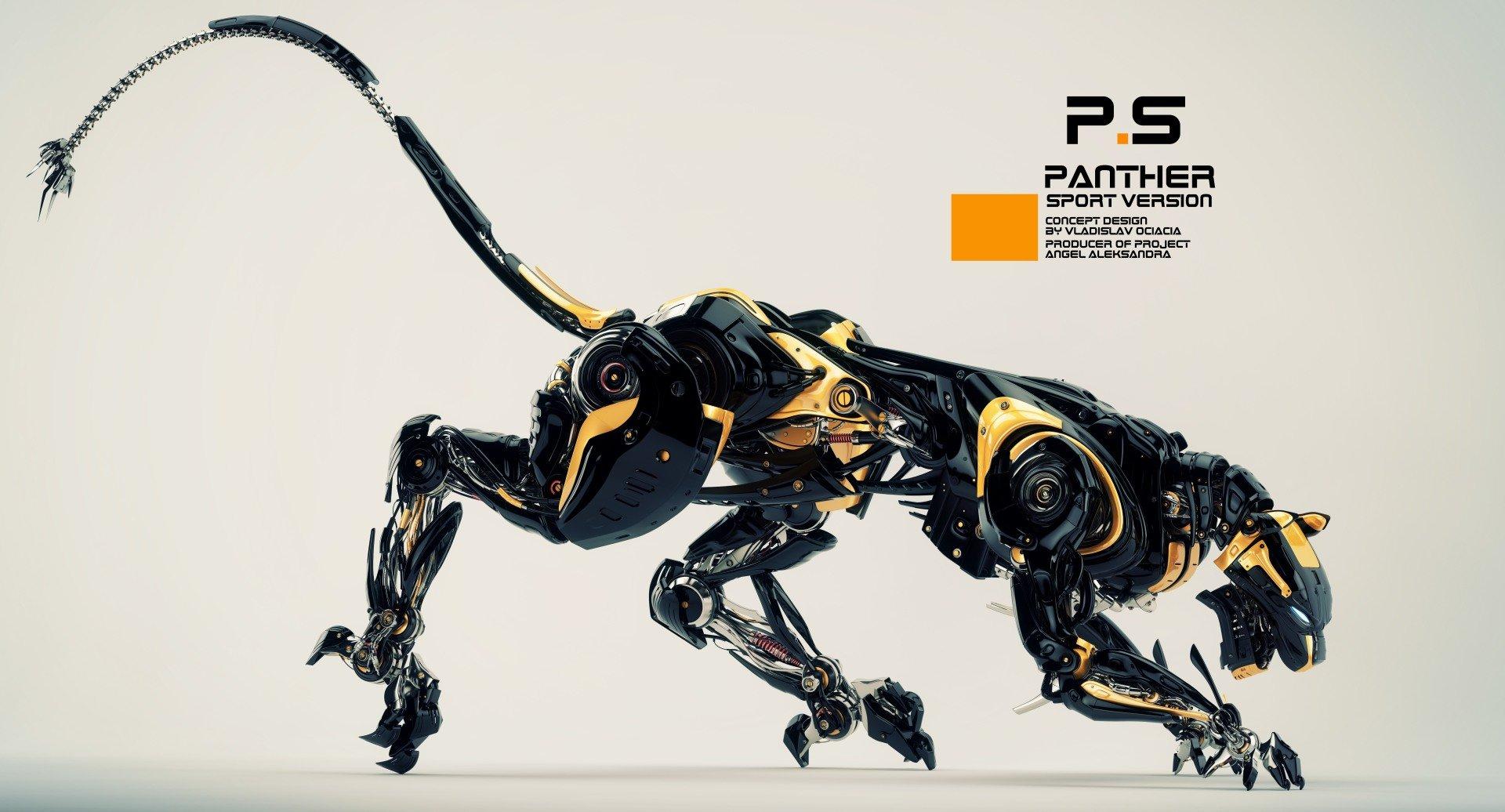 Vladislav ociacia robotic panther 8