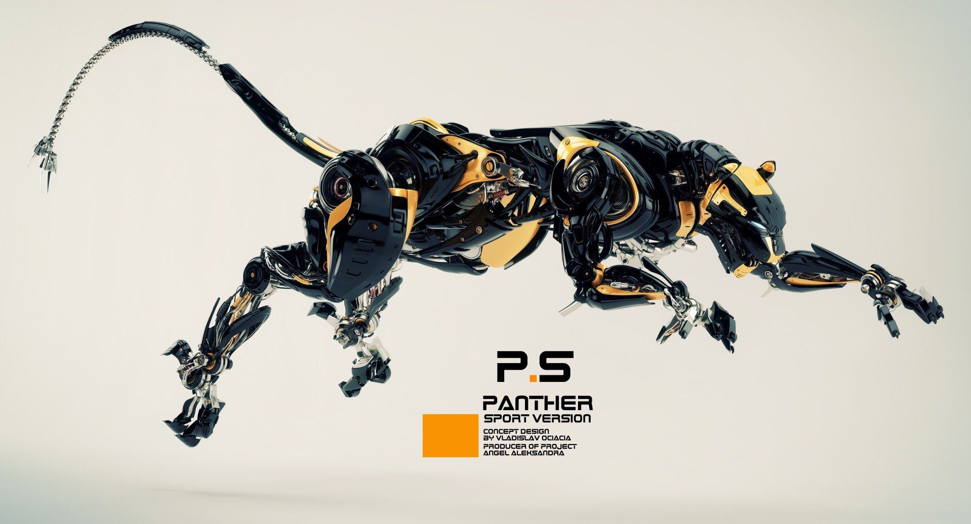 Vladislav ociacia robotic panther 12