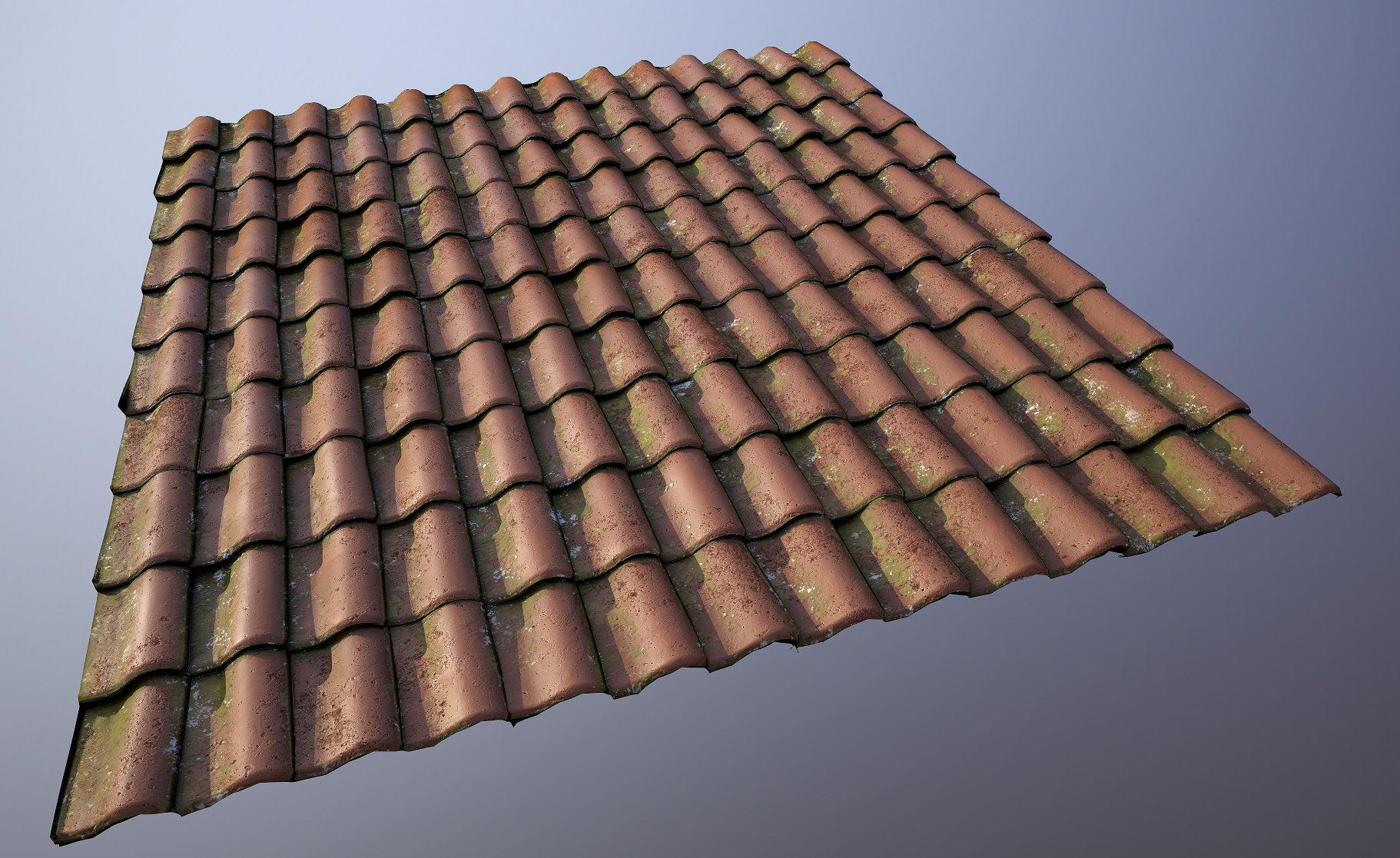 Liam tart roof tiles 01b