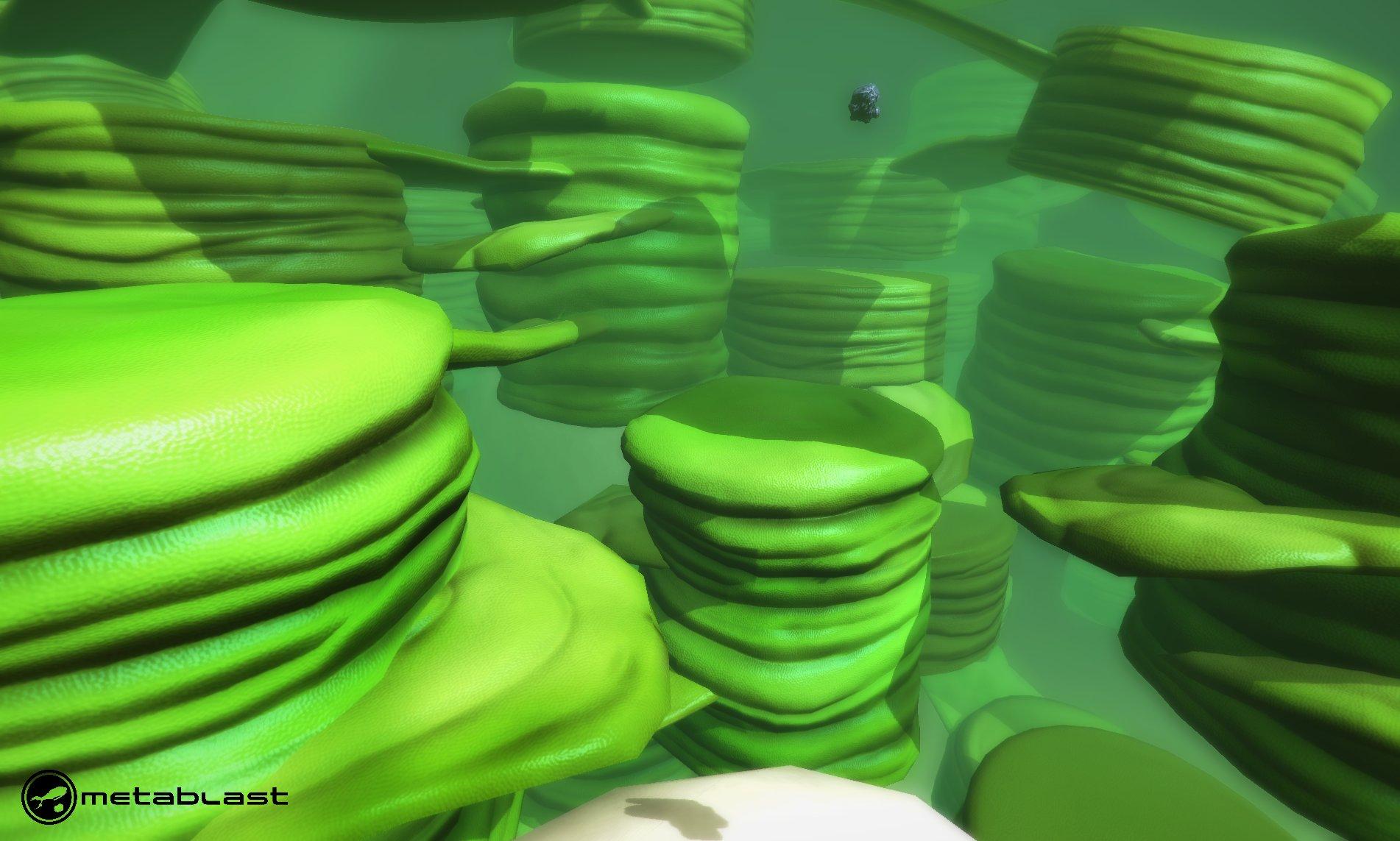 Andrew navratil metablast chloroplast 01