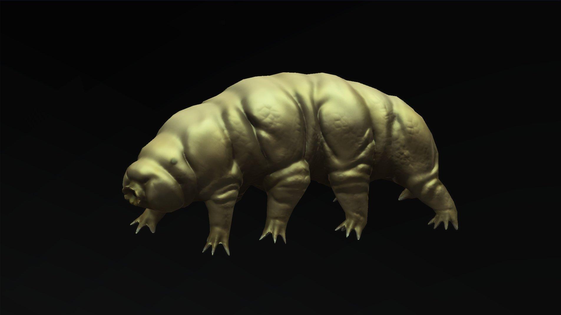 Andrew navratil tardigrade 01