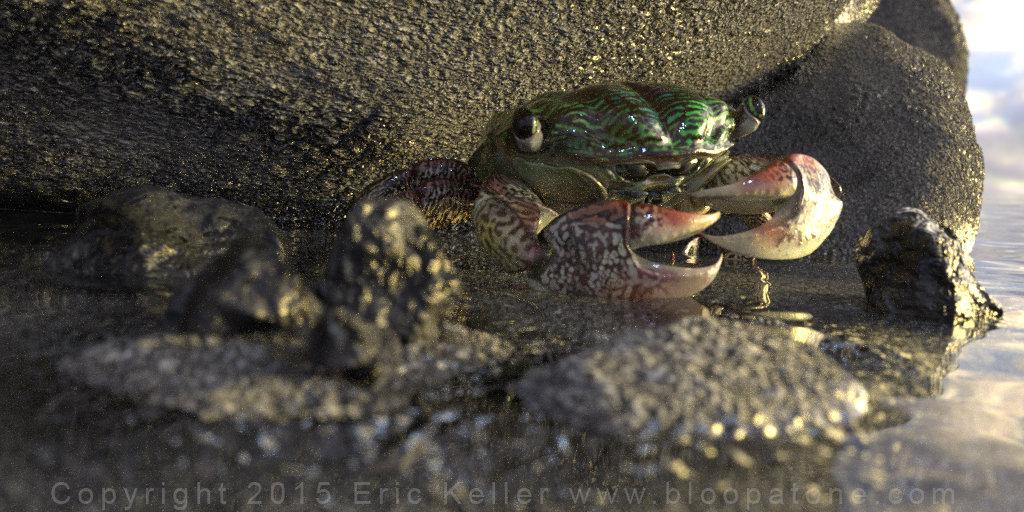 crabbity crab