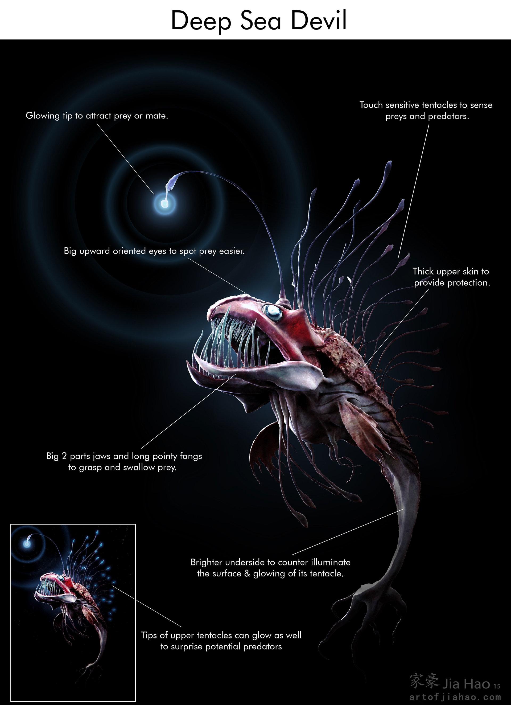 Jia hao 2015 08 deepseadevil designpresentation bio