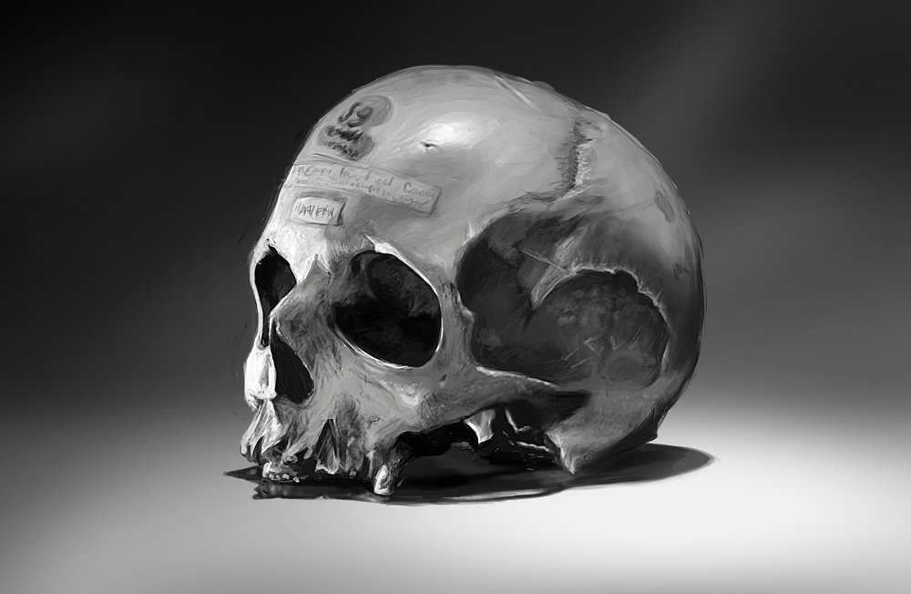 Tom bramall 08 01 14 skull