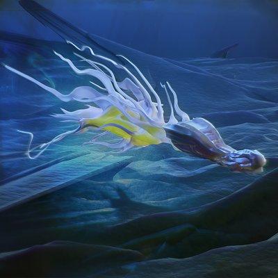 Kresimir jelusic fishy final