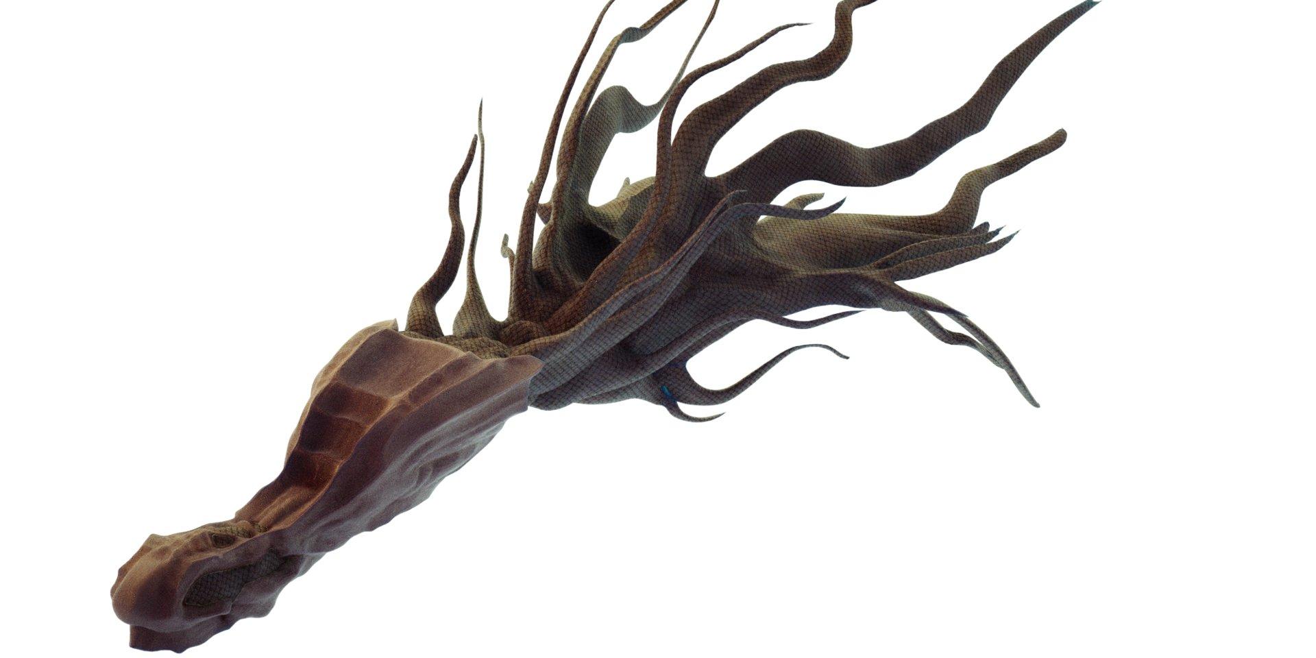 Kresimir jelusic fishy8