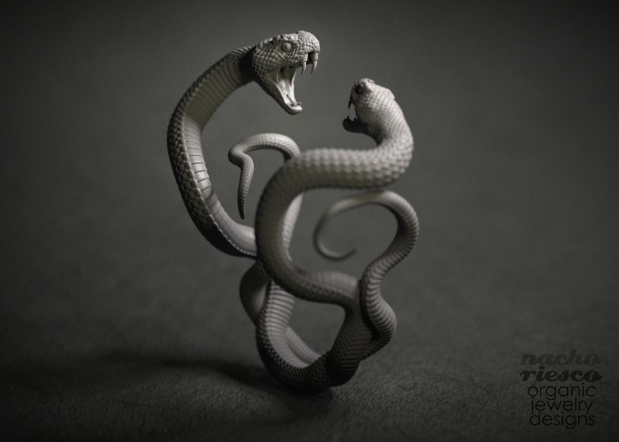 Nacho riesco gostanza fighting snakes ring