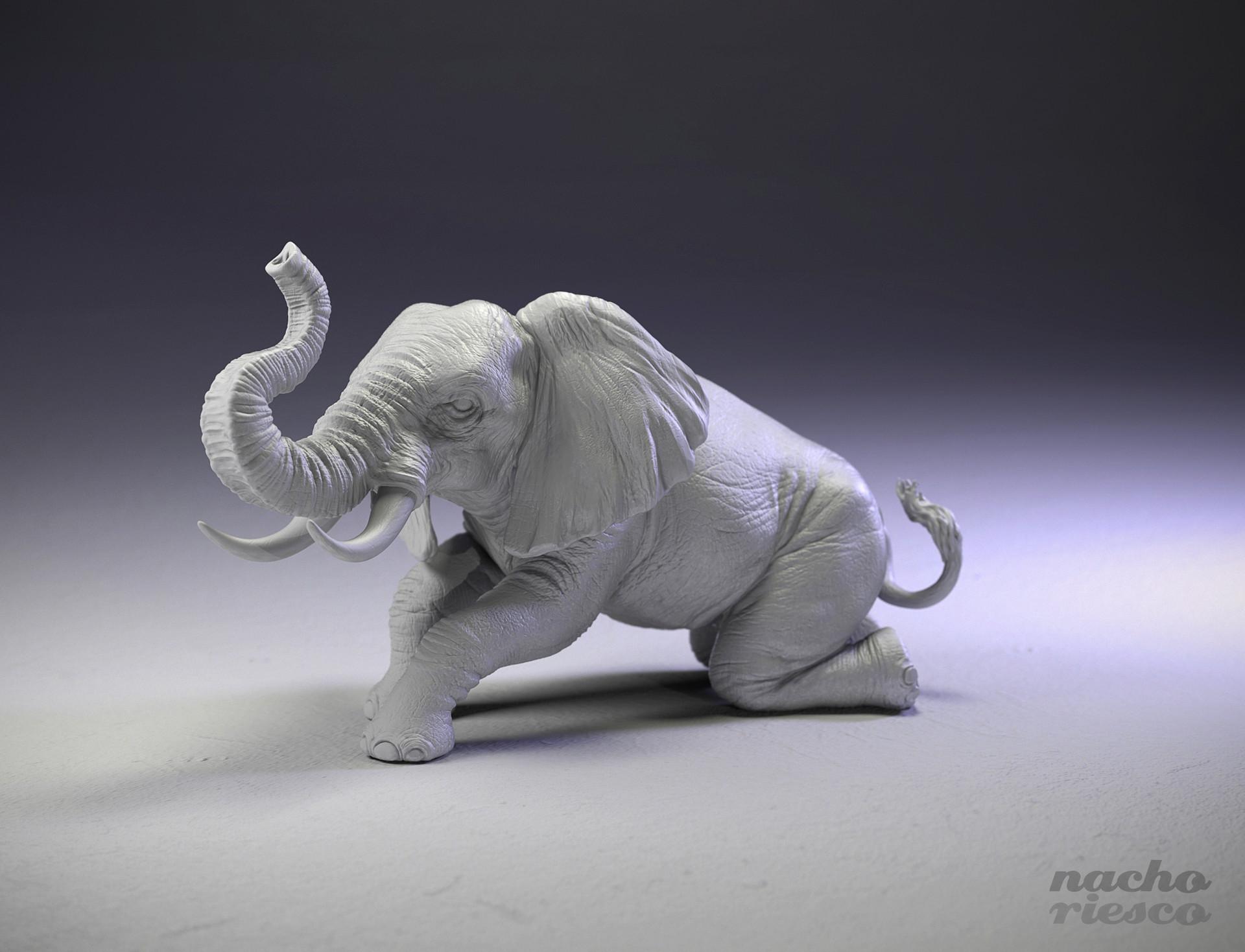 Nacho riesco gostanza elephant3d