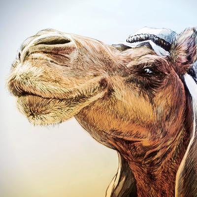 Manuel piedra montanes camel2