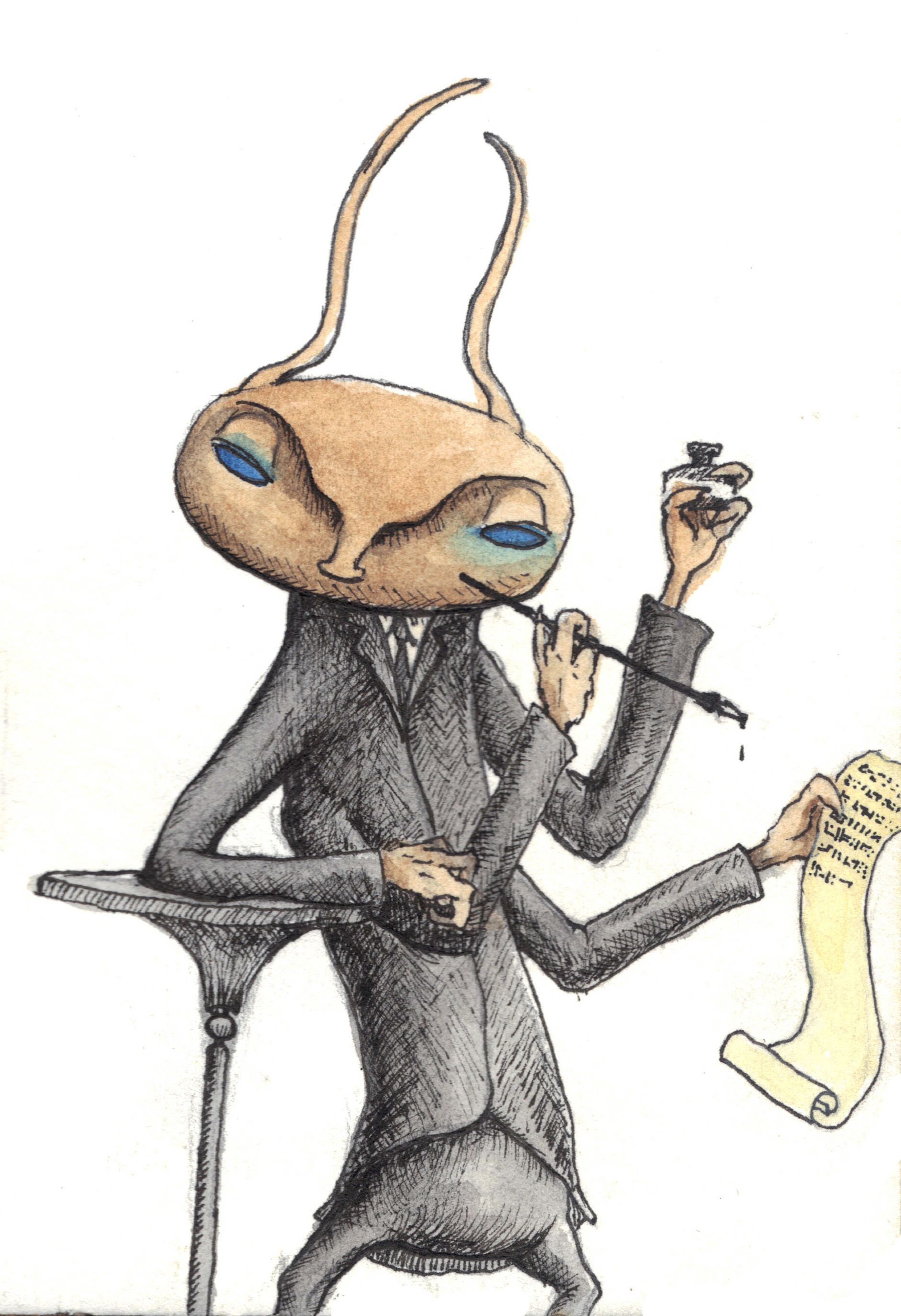 Patrick weck insect scribe pen drawing and watercolor