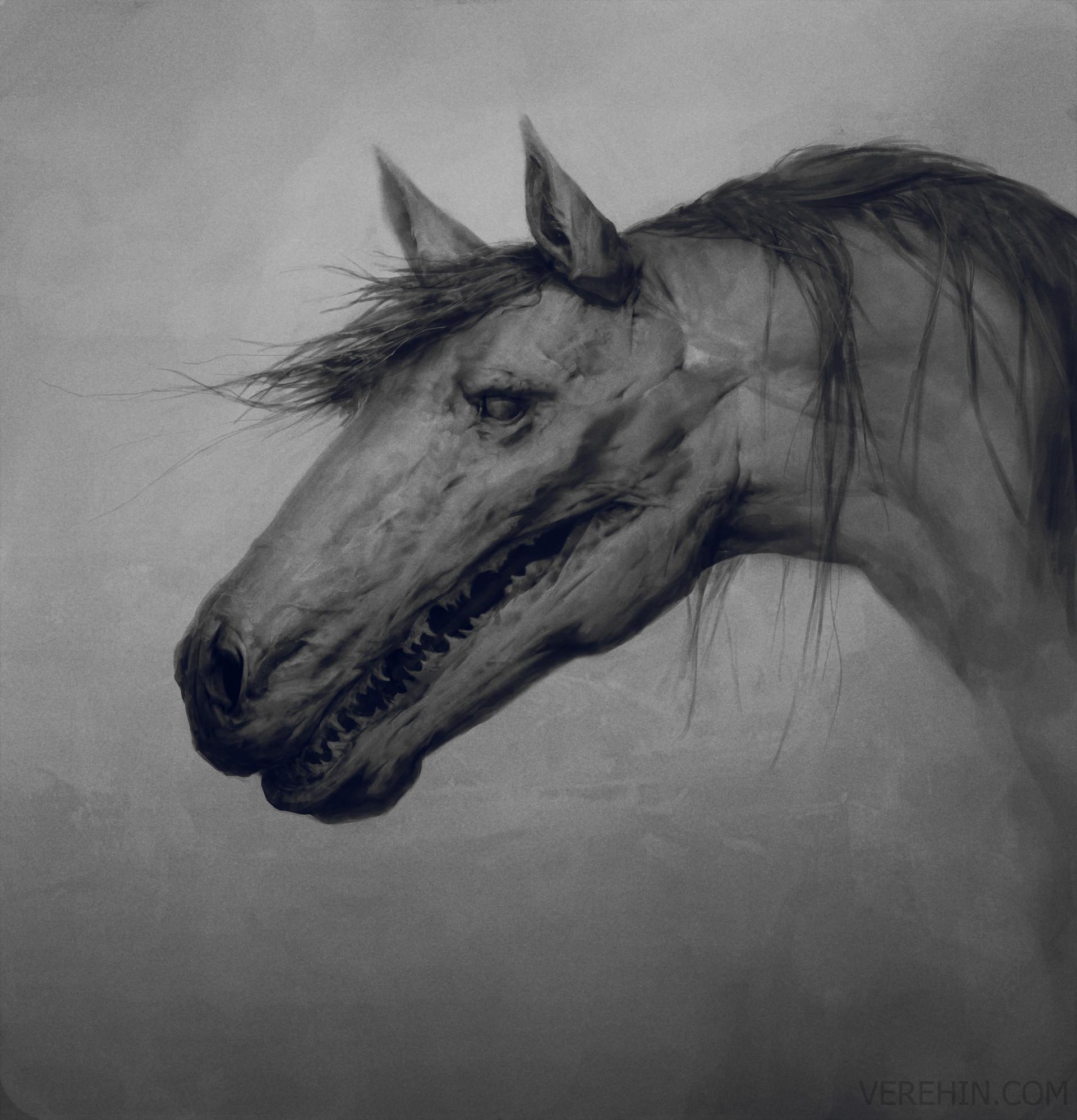 Maxim verehin horse