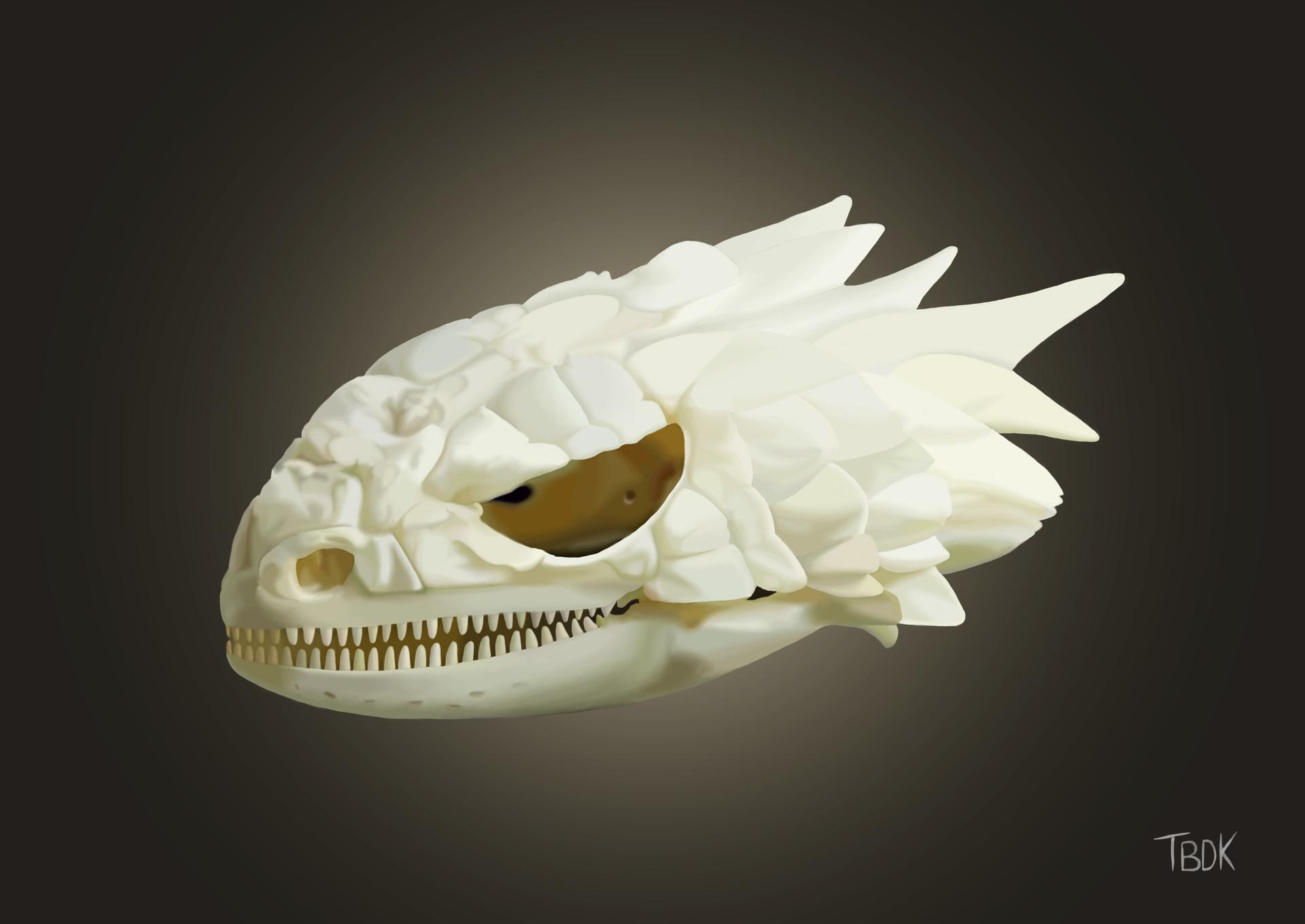 Corinne Larre Armadillo Lizard Skull