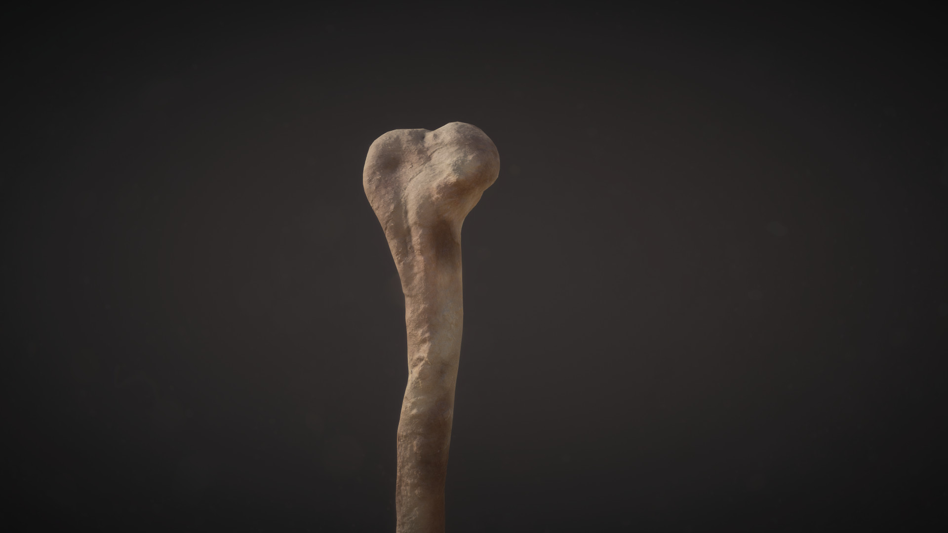 Conor scott bone 4