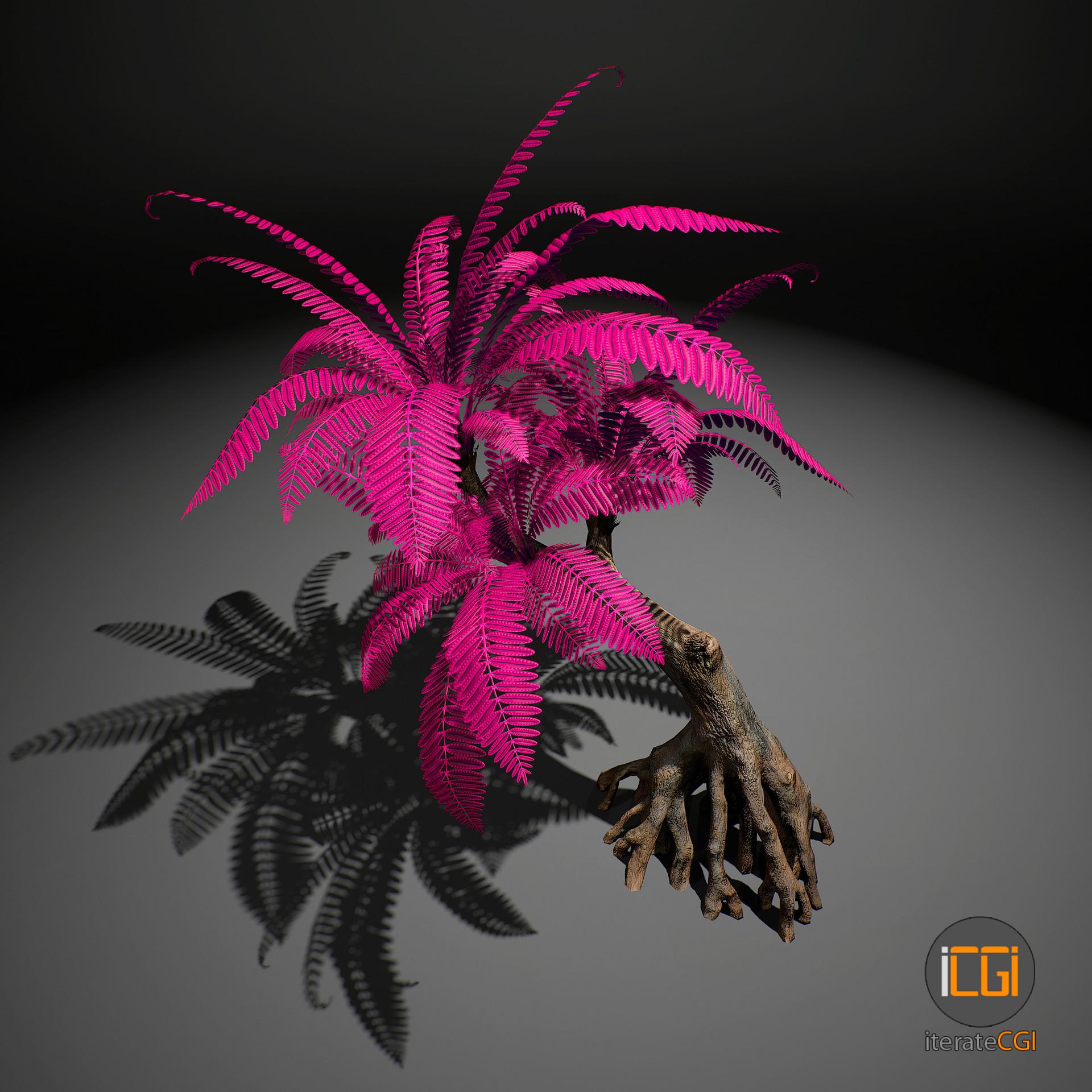 Johan de leenheer alien plant 25 24