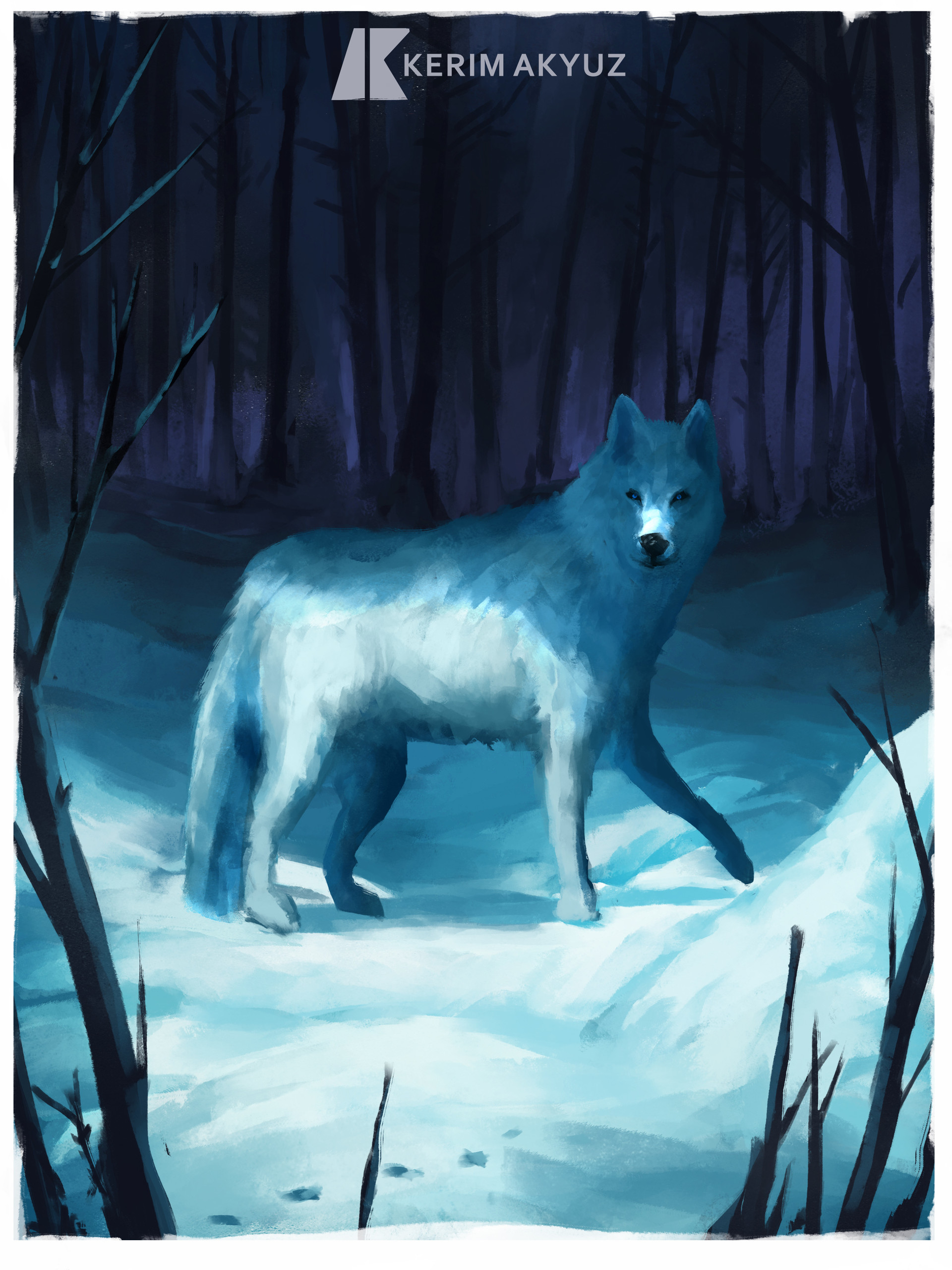 Kerim akyuz 99 snowwolf