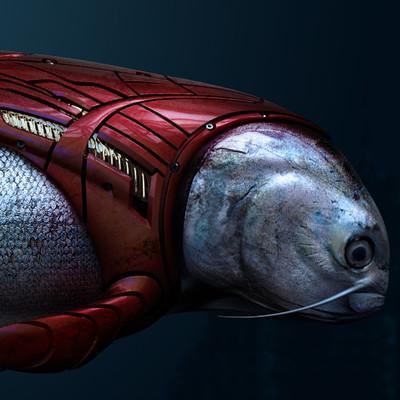 Bastiaan koch fish compwip bastiaan koch v14