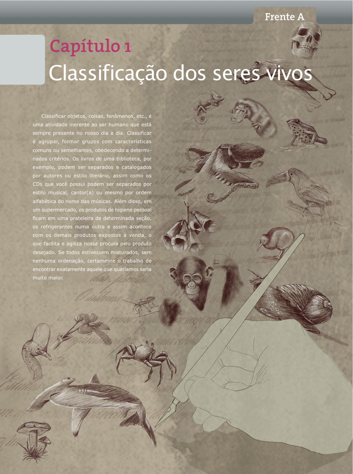 Angelo carvalho bem02a01 abertura