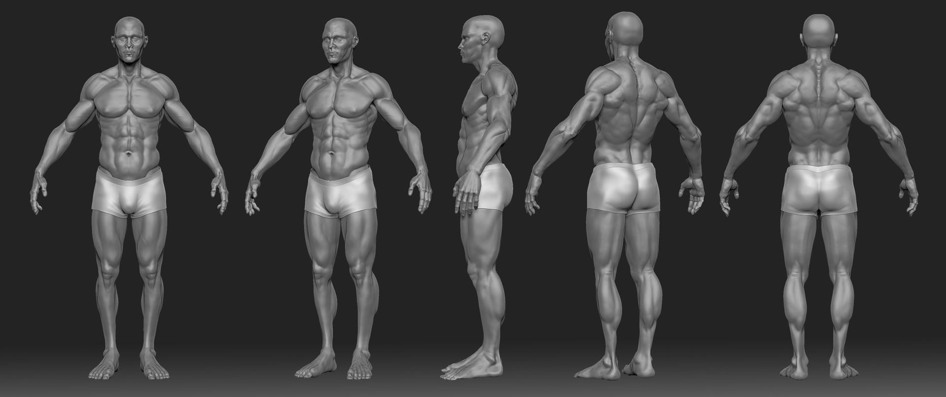 Jonathan Provençal - Anatomy Men