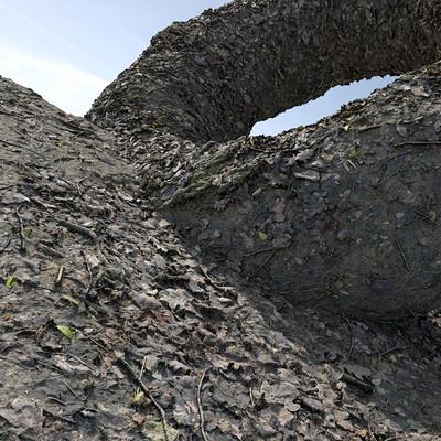 Christoph schindelar muddy forest floor 01 testrender 02