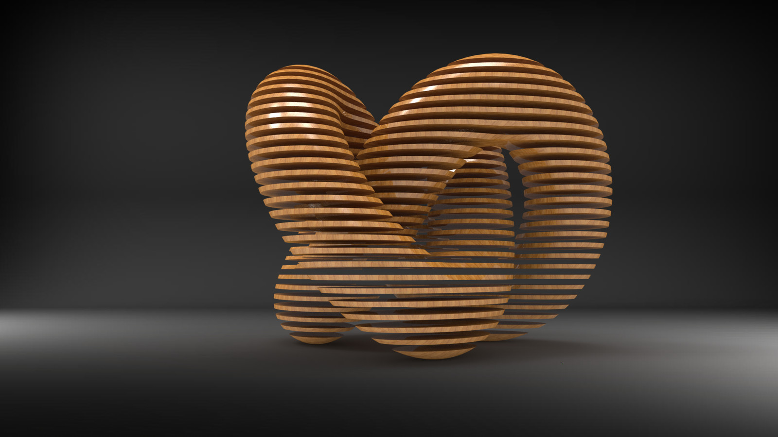 torus slice by hugo matilde