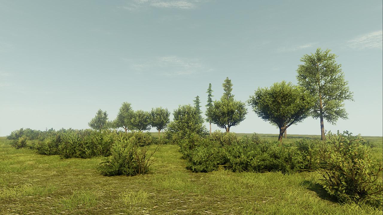 Waqas iqbal foliagescene 2