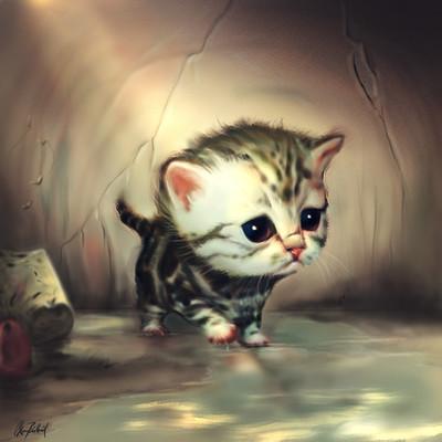 Okan bulbul kitten new 03