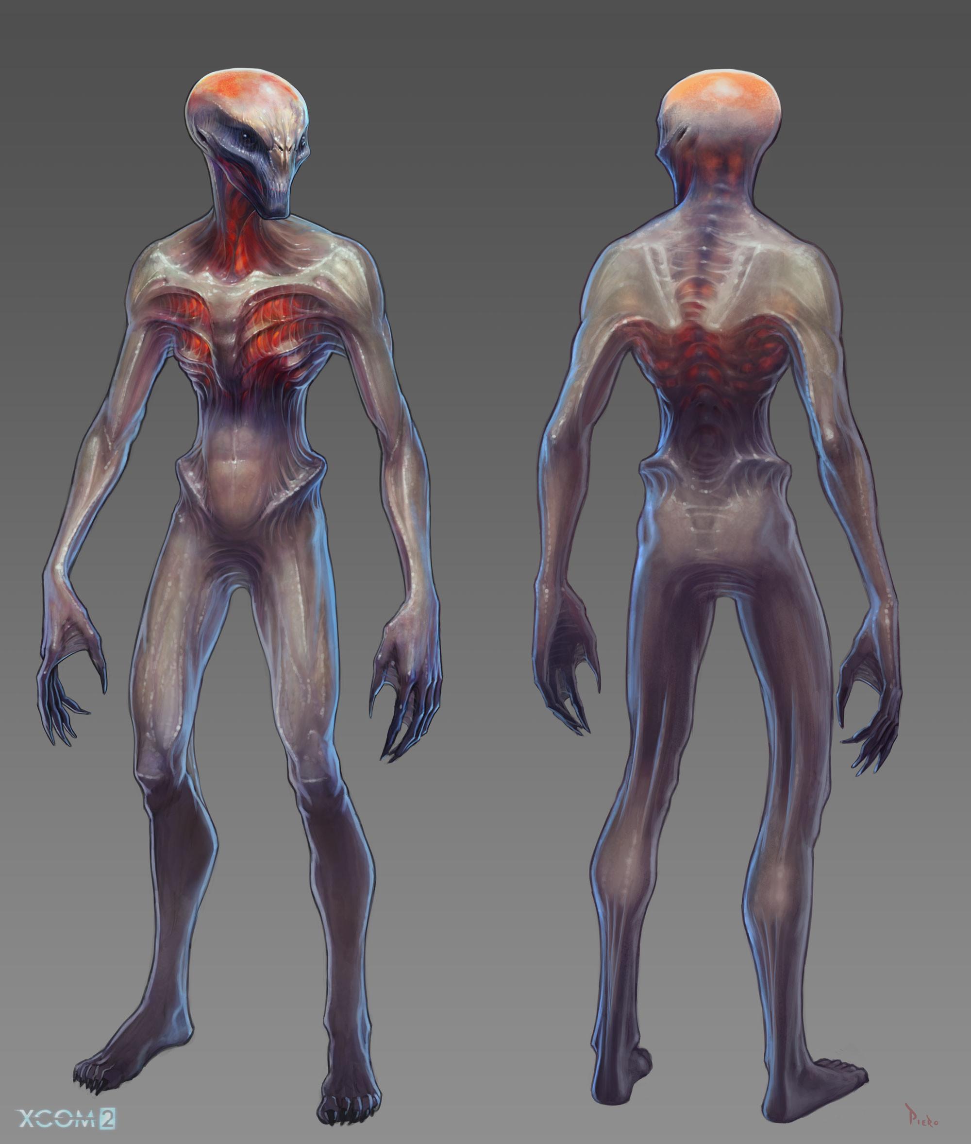 Full body Concept