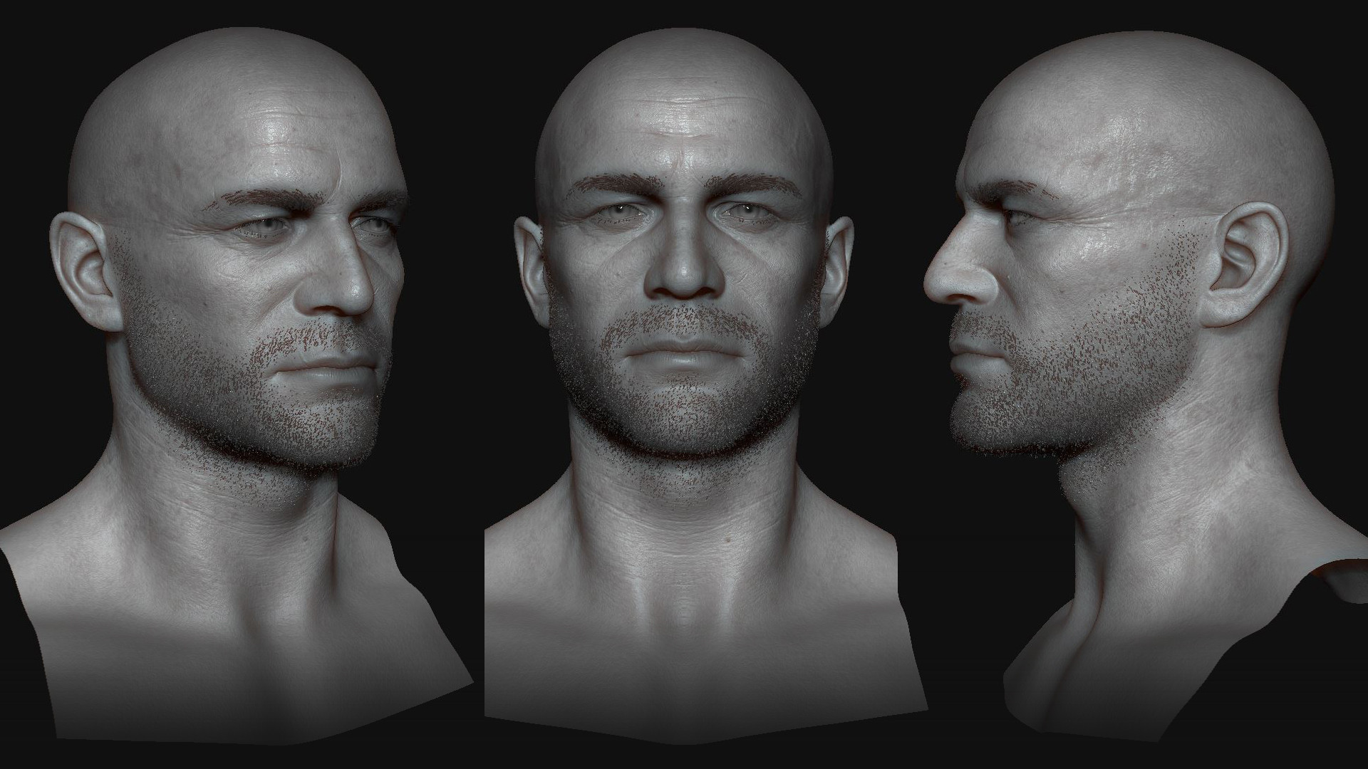 Highpoly sculpt in Zbrush
