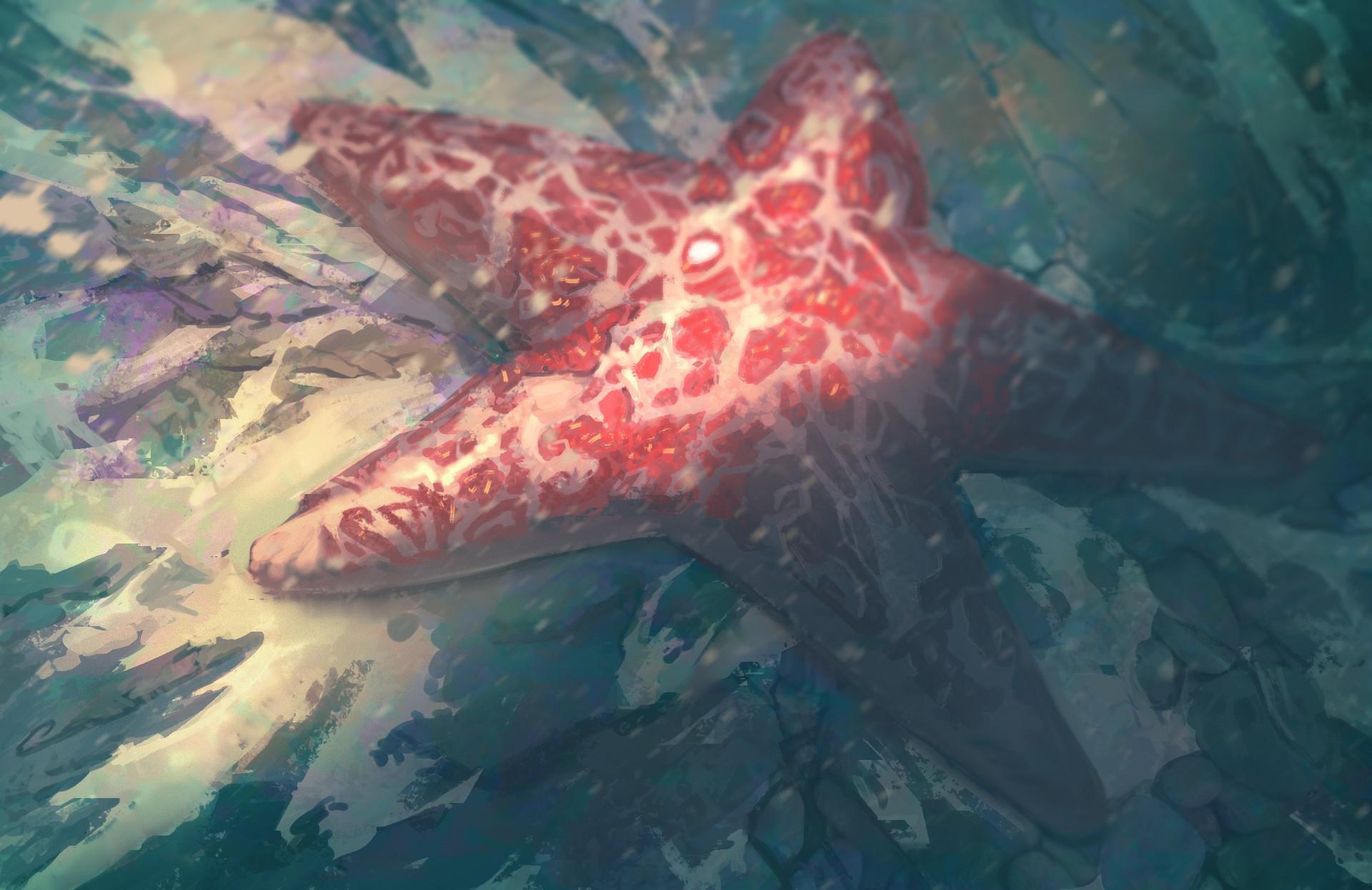 Gabriel ramos osc starfish