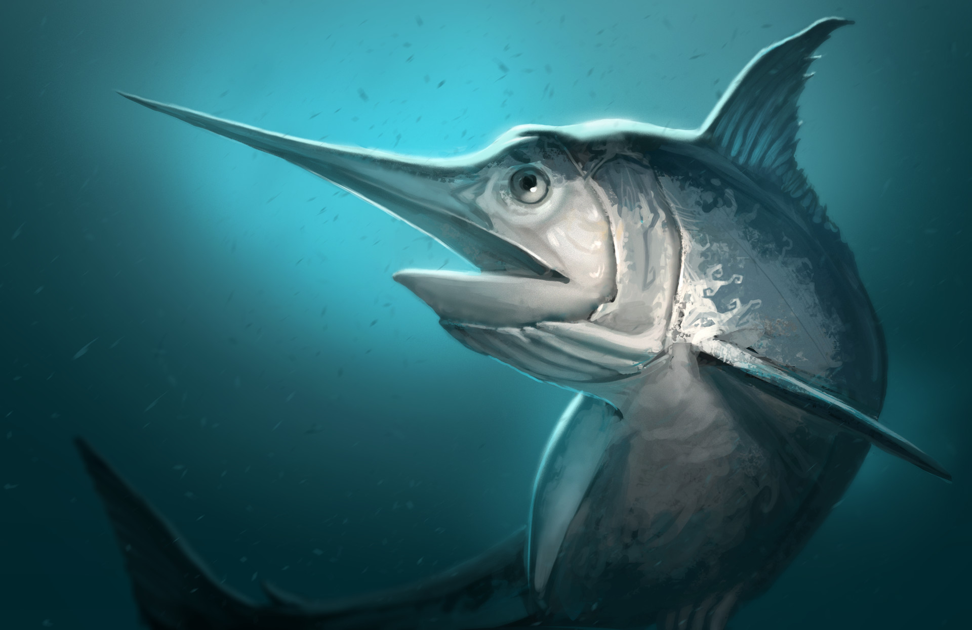 Gabriel ramos osc swordfish