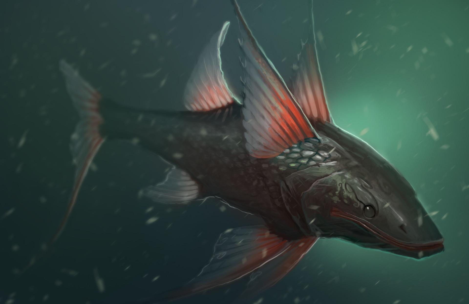 Gabriel ramos osc tripodfish