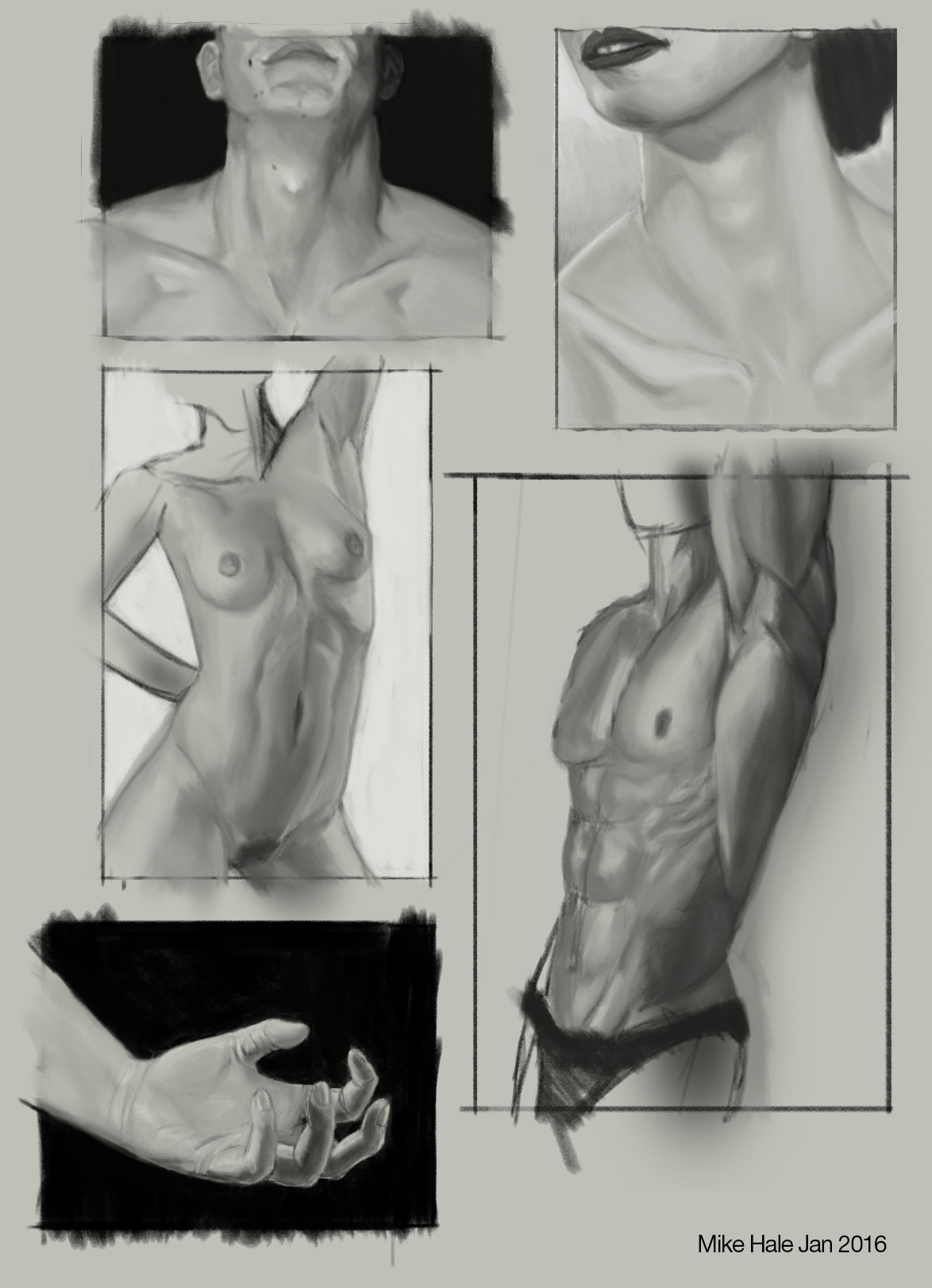 Mike hale studies da