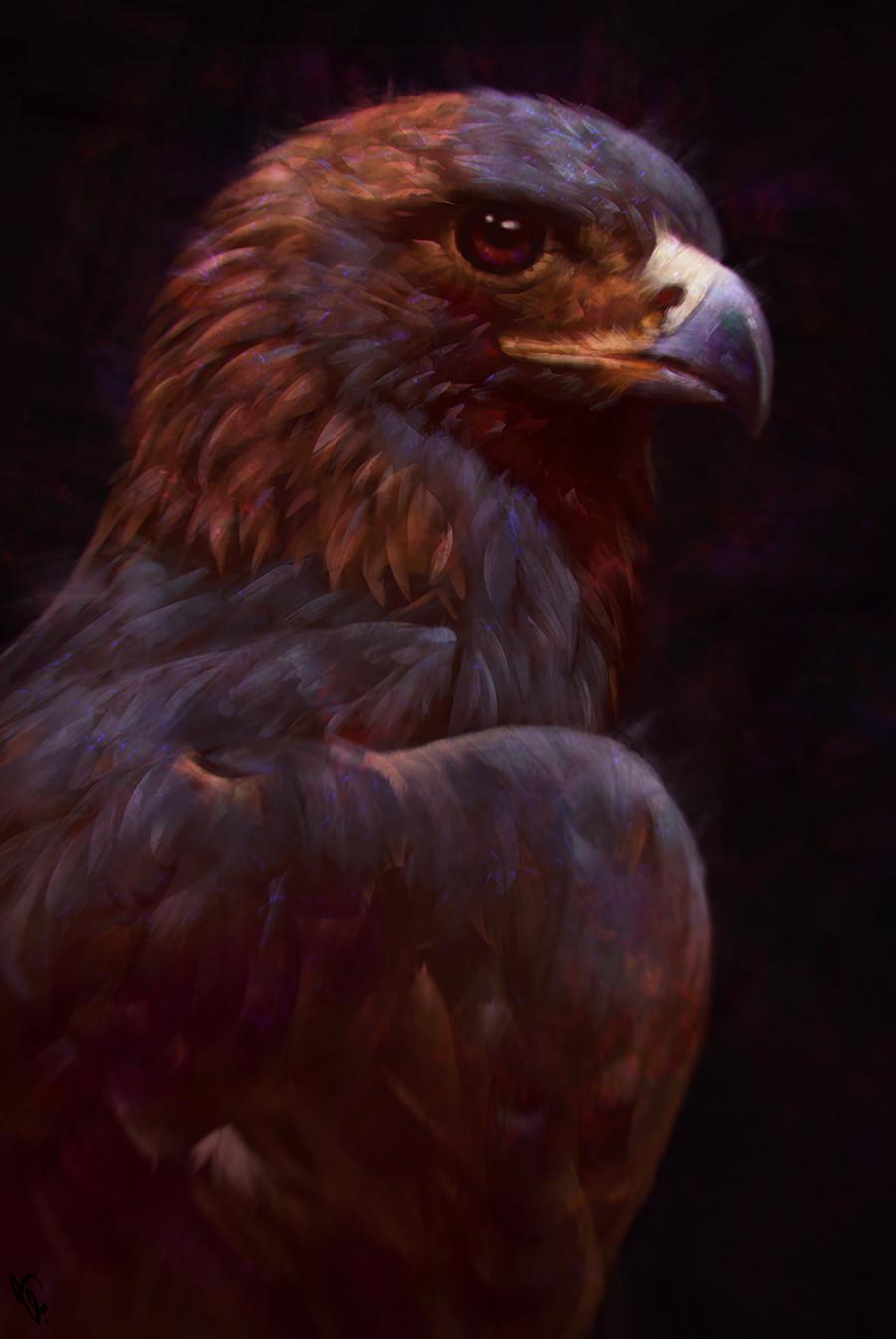 Angel ganev angelganev eagle