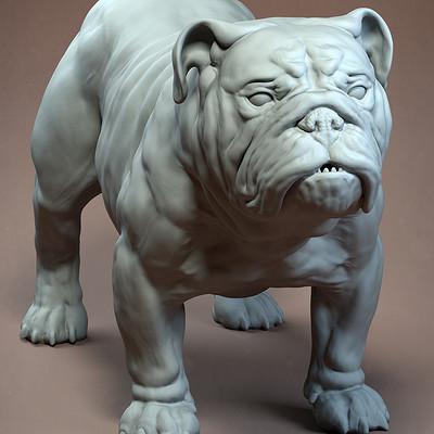 Gael kerchenbaum bulldog 006