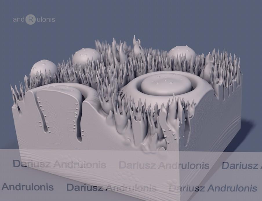 Dariusz andrulonis jezyk brodawki