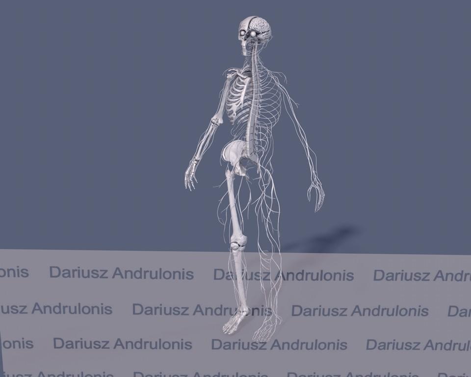 Dariusz andrulonis nerwowy caly