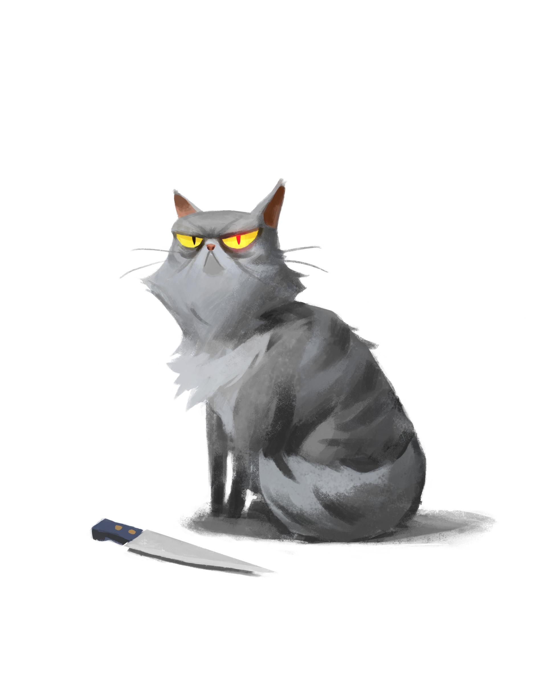 Jens claessens psyop grandmascats booboo