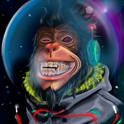 Marcos mansur monkey