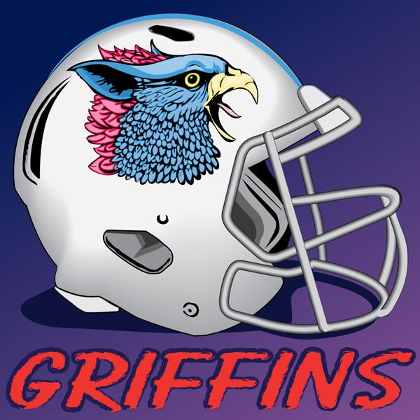 Cool Fantasy Football Helmet Logos