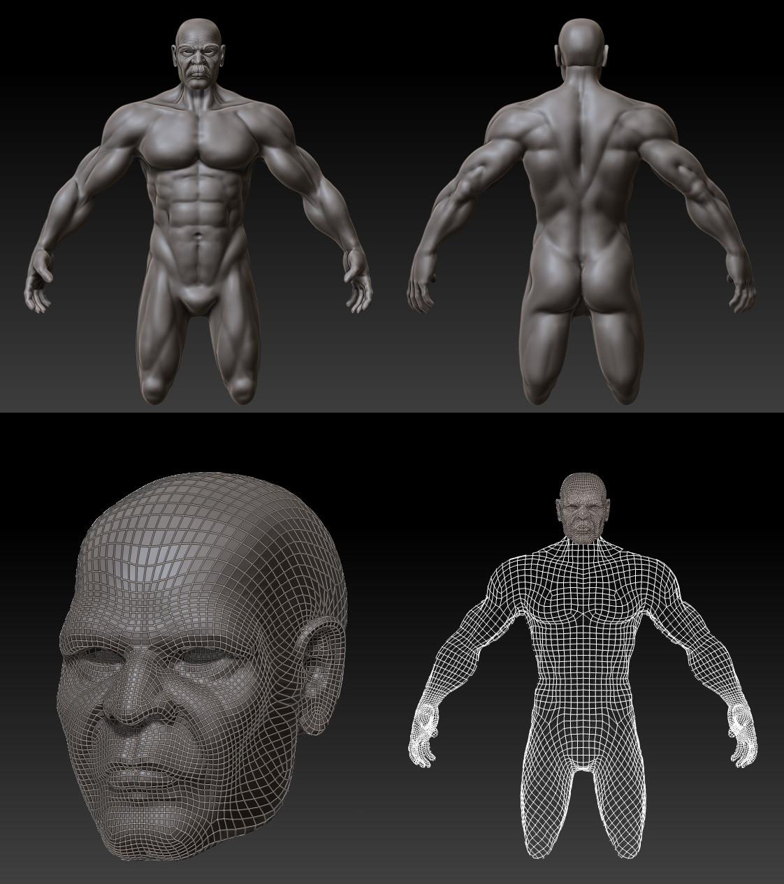 Marco ortolan base corpo