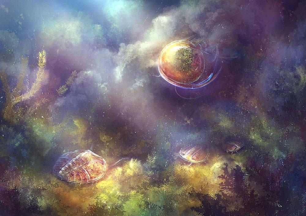 Cambrian Trilobite Larvae