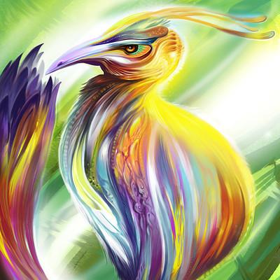 Josiah herman future bird