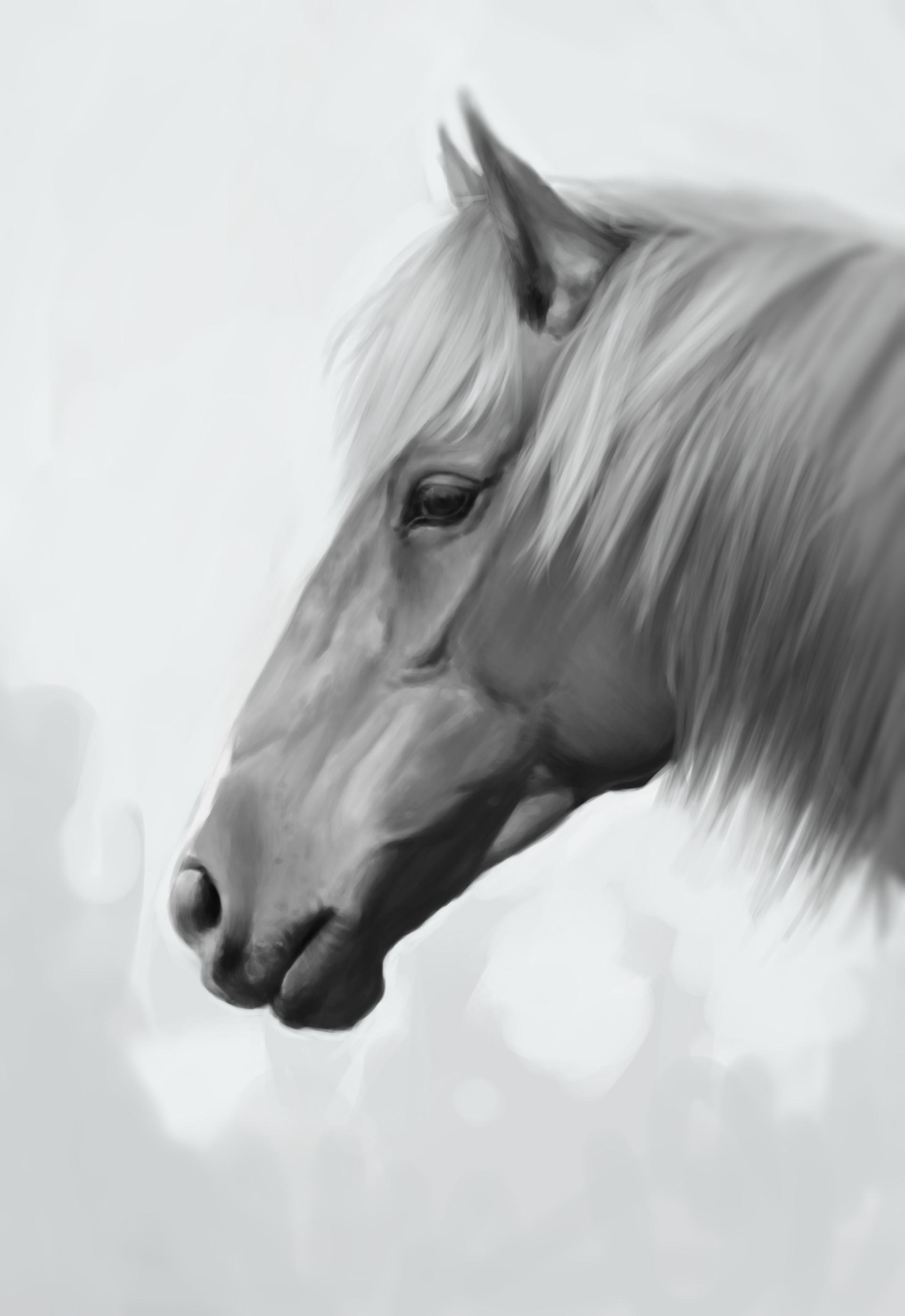 Julia thyren horsiedone